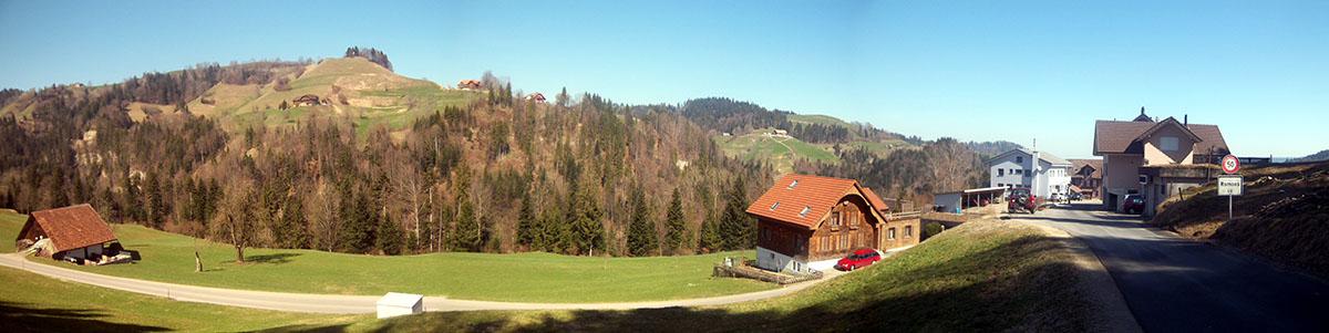 Mudanzas Saragoza-Suiza